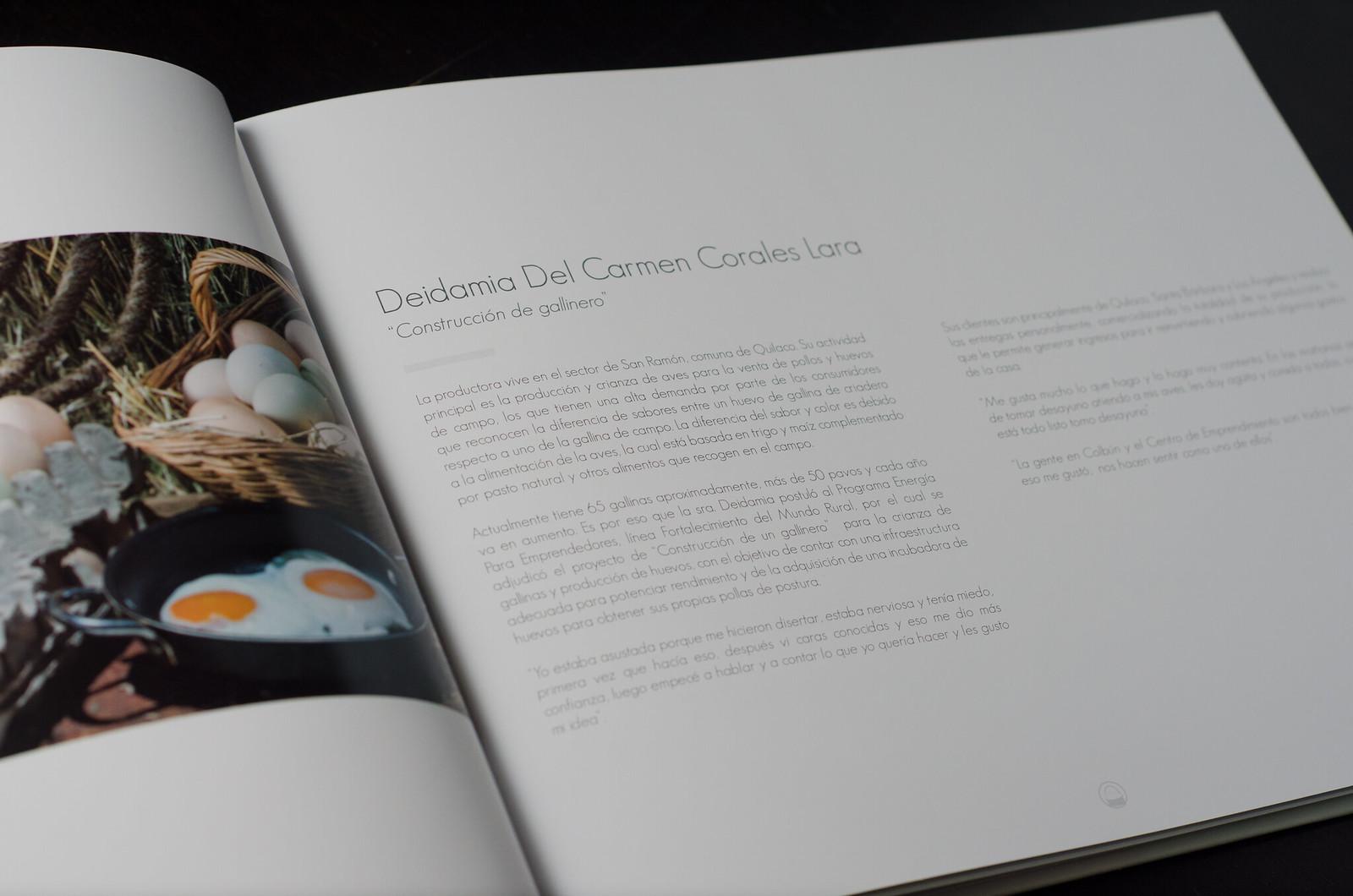 """Libro """"Historias que nos llenan de Energía"""""""