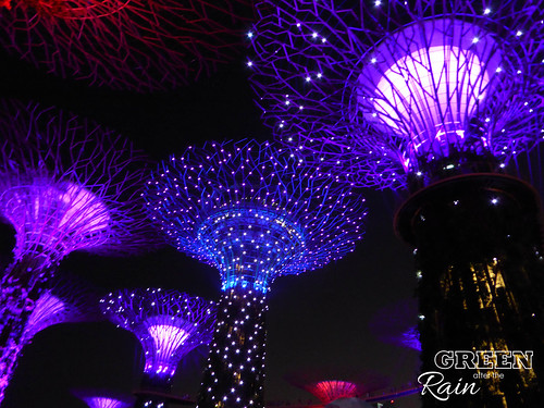 160910f OCBC Skywalk Gardens by the Bay _013