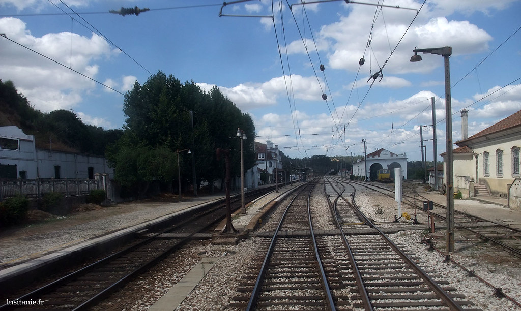 Rails du train
