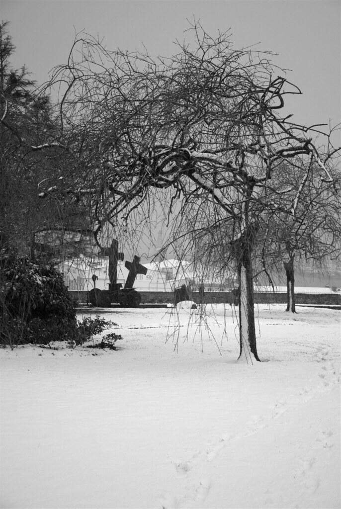 R chauffement climatique 2 neige sur brest vue du for Jardin kennedy brest