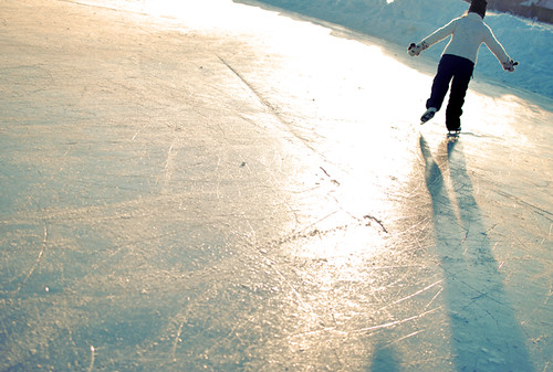 out on the ice | by plesserchick