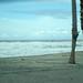 Oceanside CA Harbor
