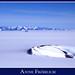 The Heart of Antarctica