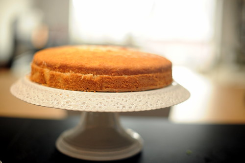 buttermilk cake waiting to be frosted | by sassyradish
