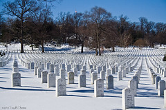 20100131C_ArlingtonCemetery18 | by Troy Thomas