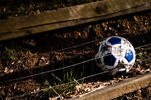 Soccer Ball in a Yard | by ryry9379
