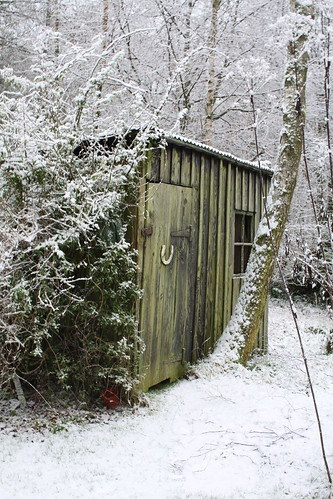 Shed in the Snow | by Norman Taylor