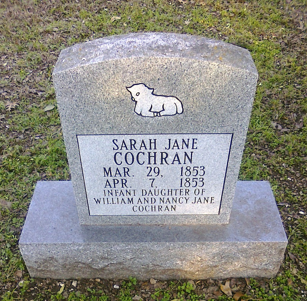 Sarah Jane S Kitchen Pressure Cooker