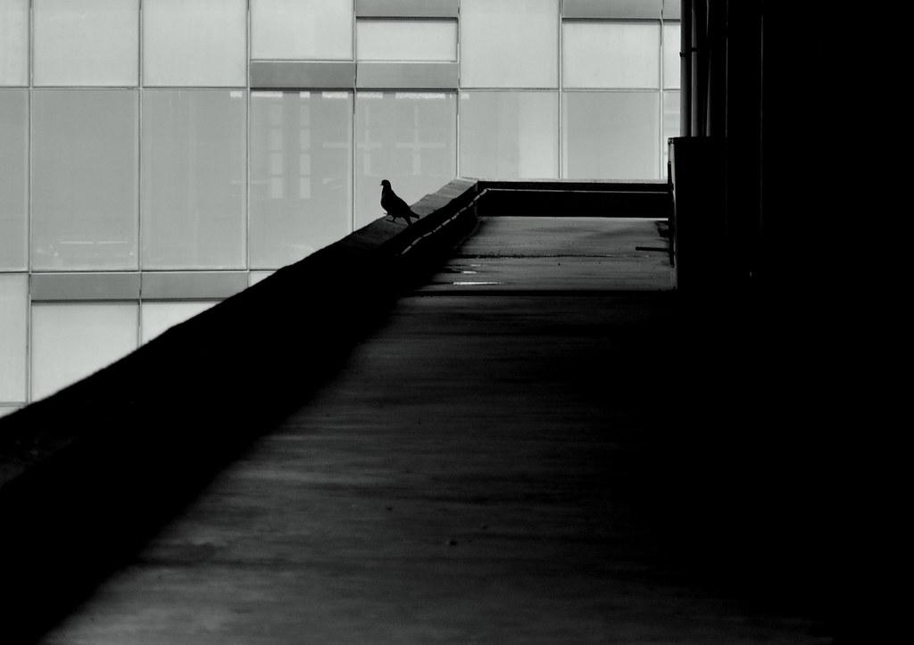 孤独 ...