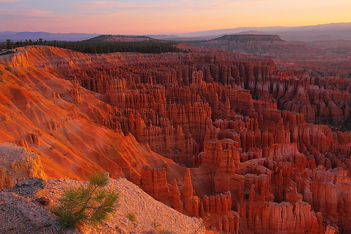 IMG_3237 Silent City, Bryce Canyon National Park | by ThorsHammer94539