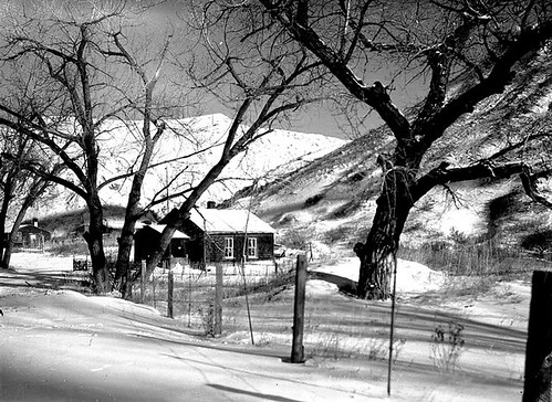 Houses in the Riverbottom at Lethbridge | by Galt Museum & Archives on The Commons