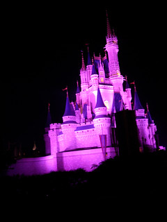 365/96 - magic kingdom | by dragonsinger