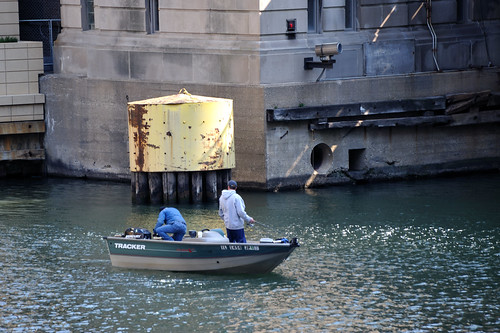 Bass fishing on the chicago river bk bob flickr for Fishing in chicago