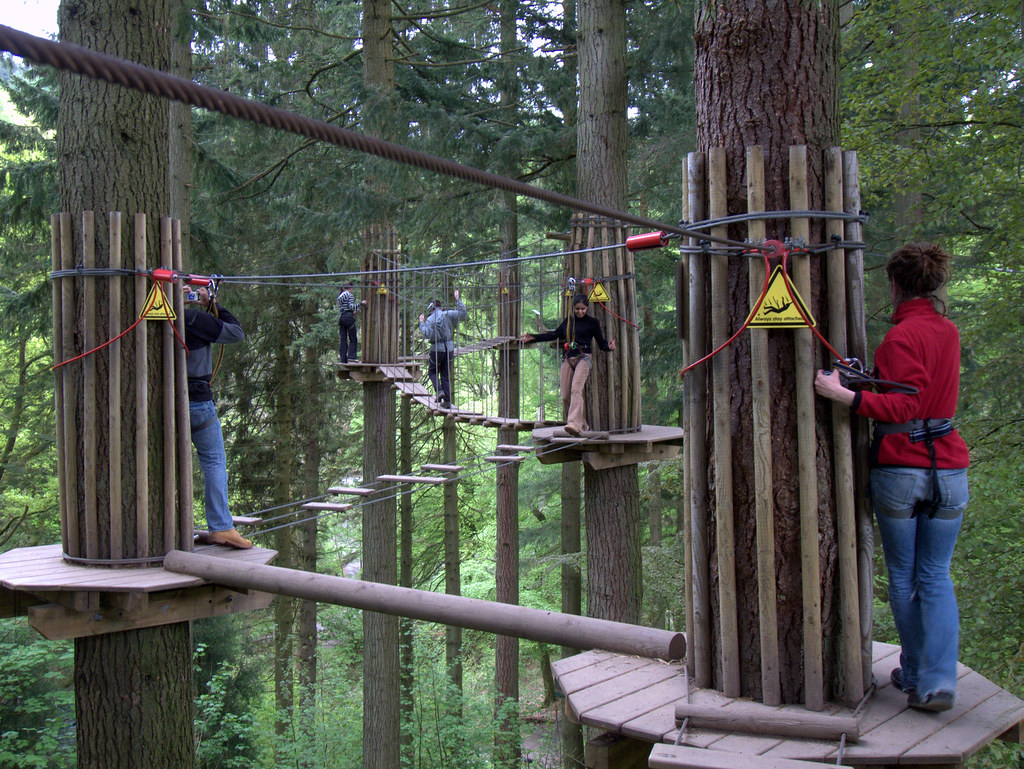 Image result for go ape