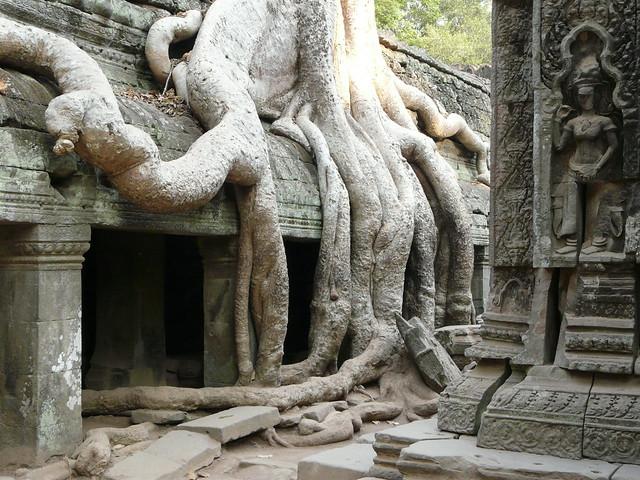 Templo Ta Prohm de Camboya (Templos de Angkor)