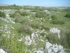 Bosnia & Herzegovina May 2010 020