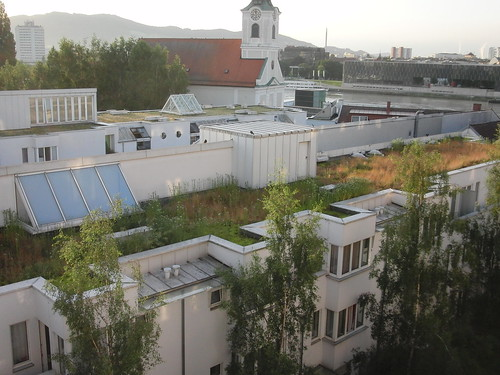 green rooftops in linz | by Inha Leex Hale