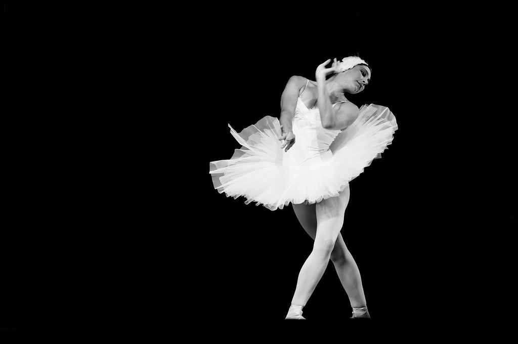 anna pavlova and the dying swan The dying swan (originally the swan) is a solo choreographed by mikhail fokine in 1905 to camille saint-saëns's le cygne from le carnaval des animaux as a pièce d'occasion for the ballerina anna pavlova, who performed it about 4,000 times.