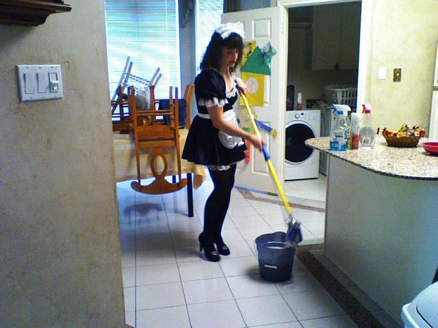 Sissy Cleaner 1836-TC68V