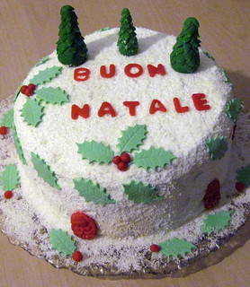 Christmas Cake | by Taylor Gabriela