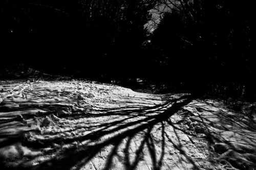 Black and White Shadows at Night | by input name
