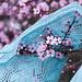 Shawl_Blossoms_1