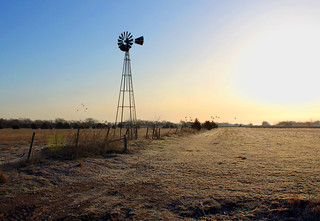 Sandhill Cranes and Windmill at Sunrise | by Toria Clark