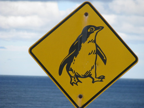 Penguin Road Sign, Tasmania | by Arthur Chapman