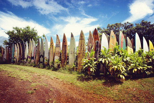Happy Fence Friday: Hang Ten Edition! | by pixelmama