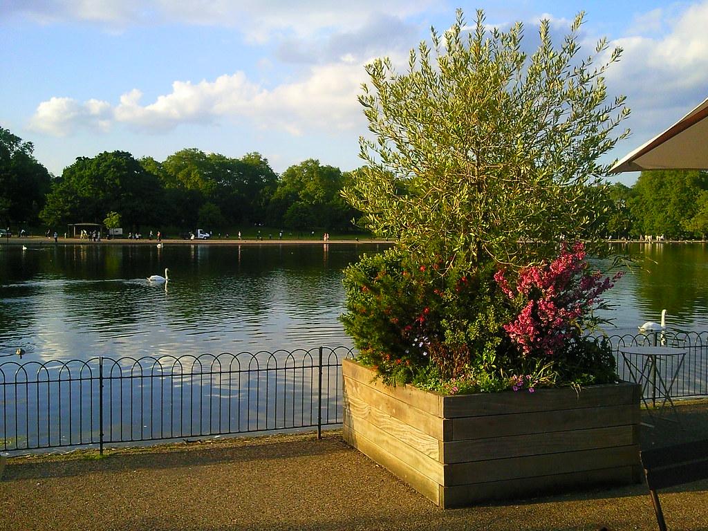 View From Serpentine Lido Cafe Hyde Park London Karen