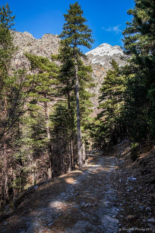 El Torreneules desde la pista del Bosc de Carboners