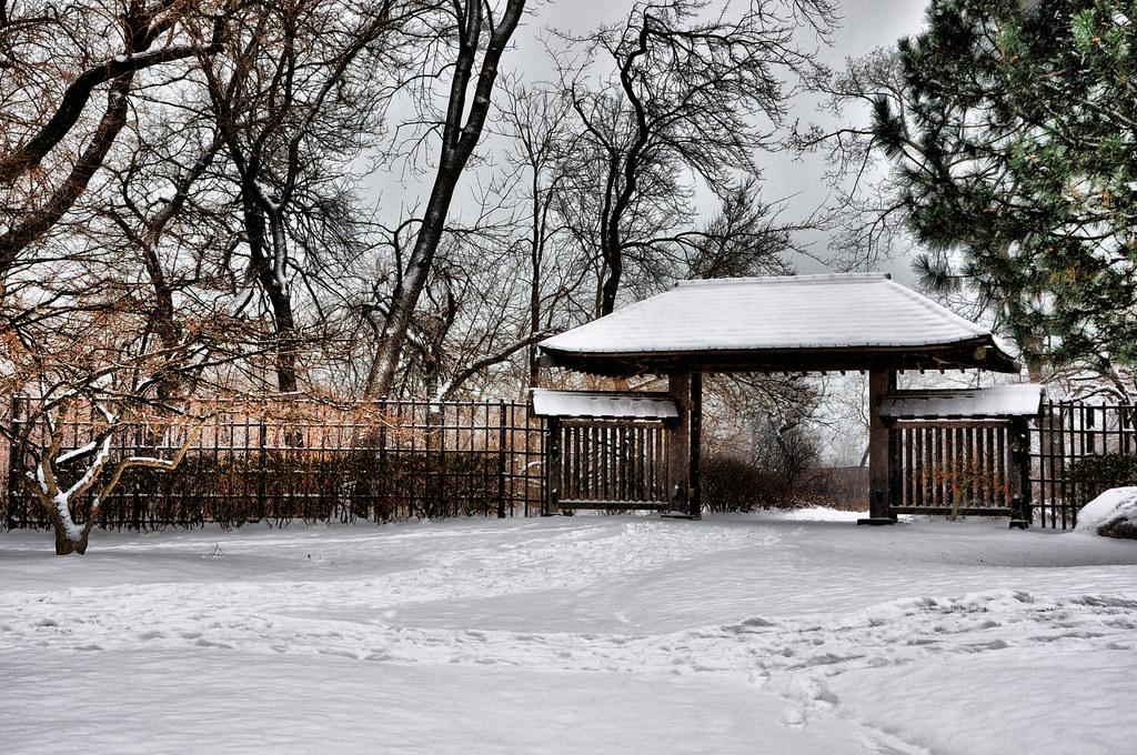 osaka winter flickr. Black Bedroom Furniture Sets. Home Design Ideas