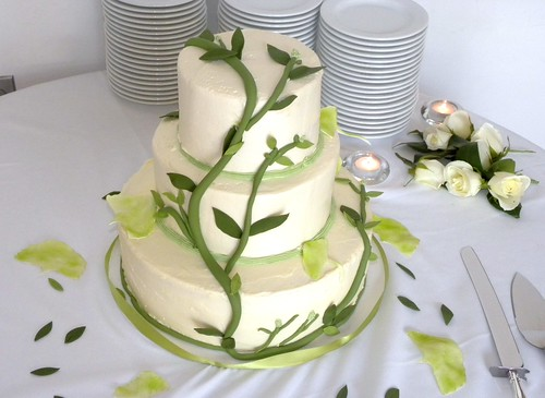 wedding cakes in wilmington nc vegan wedding cake carolina cakes amp confections wilmingt 24801