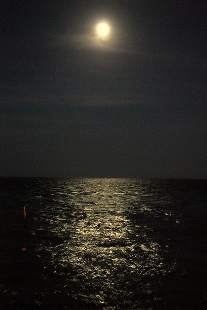 Luna Piena Riflessa Nel Mare 2010 Alessandro Scetta Al Flickr