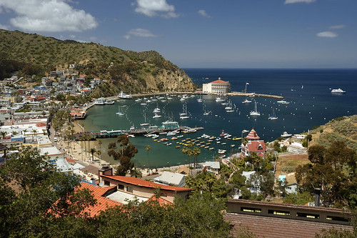 Catalina Island, California | by Carnival Cruise Lines