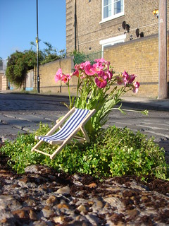 A little garden to celebrate summer | by thepotholegardener