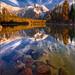 Leigh Lake Reflections, Grand Teton National Park
