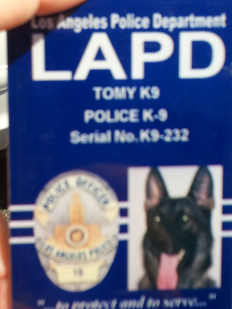 Lapd K9 Identification Card This Bomb Sniffing Dog Has
