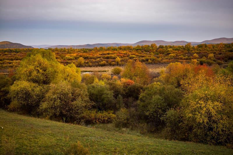 內蒙古額爾古納濕地公園美景。額爾古納濕地是中國目前保持原狀態最完好、面積較大的濕地。圖片來源:肖詩白/綠色和平。