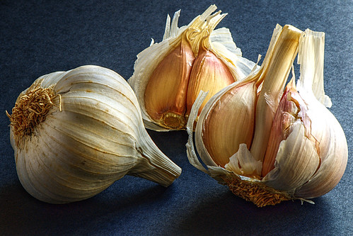 Garlic | by felipe_gabaldon