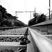 Tram tracks - B&W