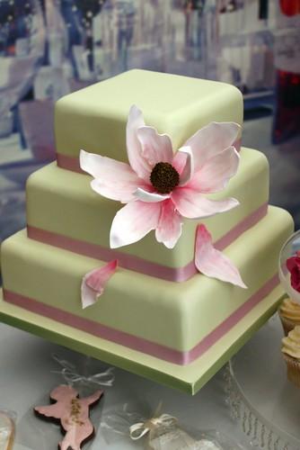 sugar magnolia wedding cake i love magnolias and i wanted flickr. Black Bedroom Furniture Sets. Home Design Ideas