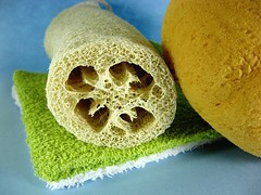 washcloth bathsponge and loofah | by Steve A Johnson