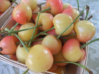 Cherries from Rhoads Farm Market | by swampkitty
