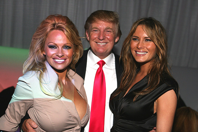 Image result for pamela anderson vs trump