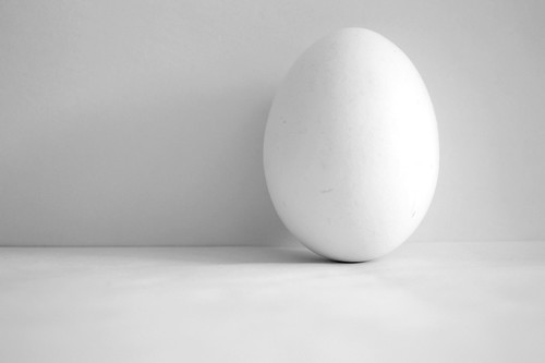 Egg | by Gabriel 'Briel' Rocha