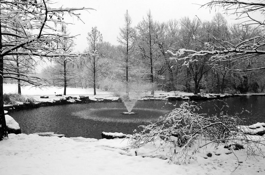 Fort Worth Texas Botanic Japanese Garden Snow Winter Flake Flickr