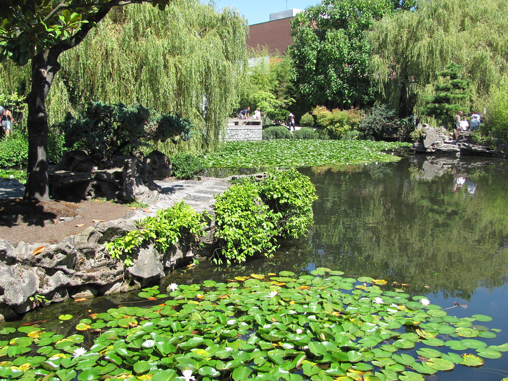 Dr Sun Yat Sen Classical Chinese Garden Vancouvers