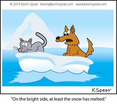Cat Dog Cartoon Mouse