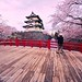 Hirosaki Castle Japan. Photographer Captures Castle.  © Glenn Waters.  Over 7,000 visits to this photo.  Thank you.